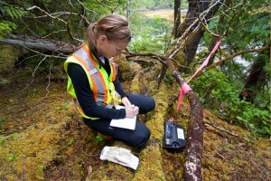 A Coastal Conservation technician recording data from a bait station on the Bischof islands, Haida Gwaii. Photo: C. Gill.